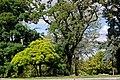Київ, Міський сад P1290557.jpg