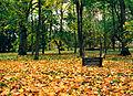 Колодец в Вабольском парке.jpg