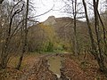 """Лужа и скала просто """"вырасшая"""" с густого осеннего леса. - panoramio.jpg"""