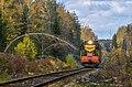 Осановское лесничество и тепловоз ЧМЭ3-1465 с пригородным поездом Кривандино - Рязановка.jpg