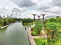 Сингапур - panoramio (33).jpg