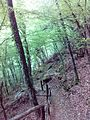 Смоларски водопад 37.jpg