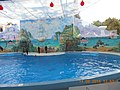 Сочинский дельфинарий парка «Ривьера». 75.jpg