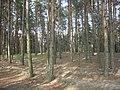 Шелаево, Валуйский район 10.jpg