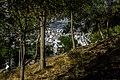 نمای شهر همدان -view of hamedan 03.jpg
