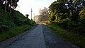 ป่าฮาลา-บาลา (นราธิวาส) 2.jpg