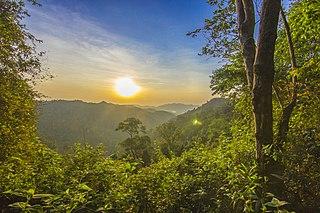 Tenasserim–South Thailand semi-evergreen rain forests Ecoregion in Southeast Asia