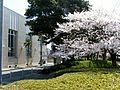 ヒストリア宇部 - panoramio (4).jpg