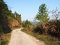 七里村道 - Road to Qili Village - 2015.03 - panoramio.jpg
