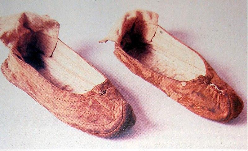 File:小頭綾鞋.jpg