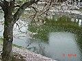 日本京都古蹟28.jpg