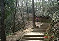 杭州. 登凤凰山 - panoramio (6).jpg