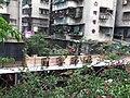 汕头月季市场 - panoramio.jpg