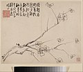 清 李方膺 墨梅圖 冊-Album of Blossoming Plum MET DP211112.jpg