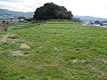 見瀬丸山古墳 2007.02.24 - panoramio - alisa 1988 08 (3).jpg