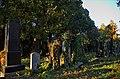 011 - Wien Zentralfriedhof 2015 (22605268813).jpg