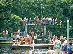 Summer Divers And Swimmers At Wakulla Springs