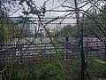 1. Mai Spaziergang durch den Großen Tiergarten 2021.jpg