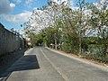 1409Malolos City Hagonoy, Bulacan Roads 19.jpg
