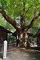 150921 Hotaka-jinja Azumino Nagano pref Japan08n.jpg