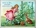 1881 - Keller Brothers - Trade Card - Allentown PA.jpg