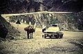 1972 RUGOVO SCHLUCHT - panoramio.jpg