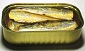 2006 sardines can open.jpg