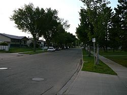 A residential street in Elmwood