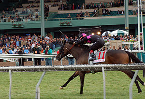 Sunshine Millions Turf Stakes - Lava Man (with jockey Corey Nakatani) about to cross the finish line to take 1st place in the 2007 Sunshine Millions Turf Stakes.