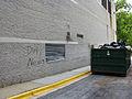 2009 07 28 - 8032 - Silver Spring - Alley graffiti (3819345444).jpg