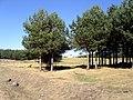 2011-09-18 Refugio de la Morcuera - panoramio.jpg