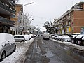 2012-02-04 After snowfall in Northern Rome 03.jpg