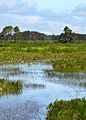 2012 Photo Contest - Landscape Category (7944739320).jpg