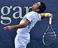2013 US Open (Tennis) - Qualifying Round - Victor Estrella Burgos (9754698914).jpg