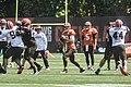 2016 Cleveland Browns Training Camp (28586368992).jpg