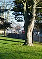 2016 Woolwich, St Mary's Gardens 35.jpg