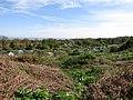 2018-05-01 Allotment gardens, Overstrand.JPG