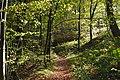 20191026Landschaftsschutzgebiet LK Sankt Ingbert6.jpg