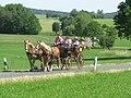 21te Rammenauer Schlossrundfahrt der Pferdegespanne (076).jpg