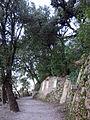 288 Montserrat, camí dels Degotalls.JPG