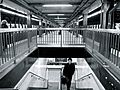 34 St Penn Station A train plat stairs.jpg