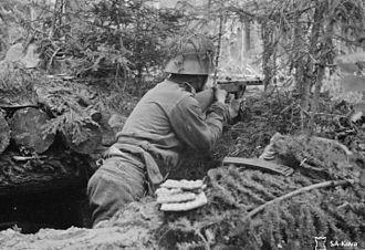 Battle of Vuosalmi - Image: 4407Kannas K Pmies Vuosalmella