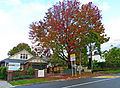 45 Tryon Road, Lindfield, New South Wales (2011-04-28) 01.jpg
