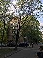 60-letiya Oktyabrya Prospekt, Moscow - 7522.jpg