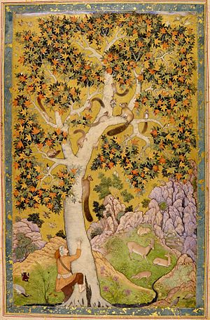 Abu al-Hasan (Mughal painter) - Squirrels in a Plane Tree (c. 1610) British Library