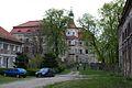 8973viki Pałac w Domanicach. Foto Barbara Maliszewska.jpg
