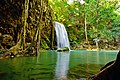 A beautiful waterfalls with big old tree hiding in the deep forest at Erawan National Park, Kanchanaburi province, Thailand.jpg