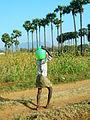 A man carrying Water.JPG