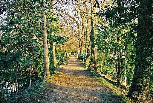 Addison's Walk, Winter 2002 (2)