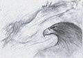 Adler Gwaihir.jpg